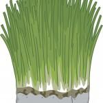 bigstock-Illustration-Featuring-a-Block-76918331