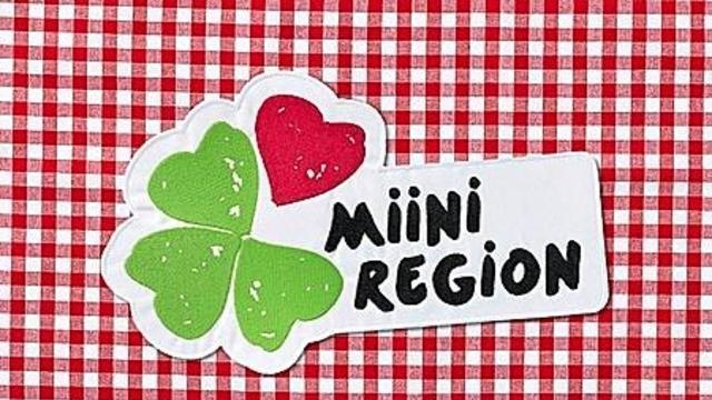 miiniregion